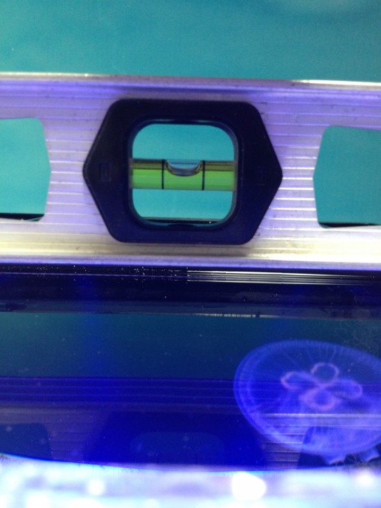 Leveling your jellyfish tank properly